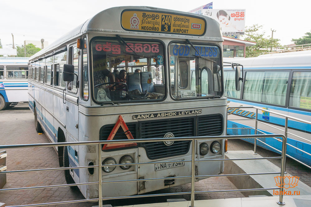"Автобус №240 ""Аэропорт - Негомбо"""