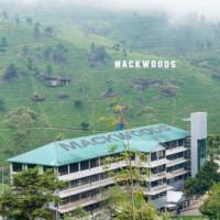 Фабрика Маквудс и чайные плантации