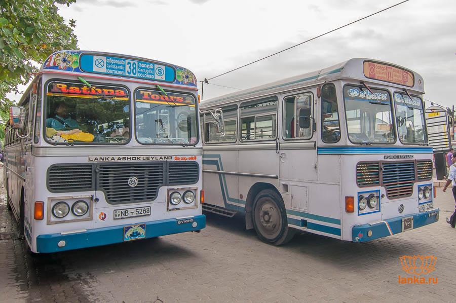 Автобусы Шри-Ланки