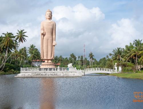 Что необходимо знать путешественнику отправляясь на Шри-Ланку