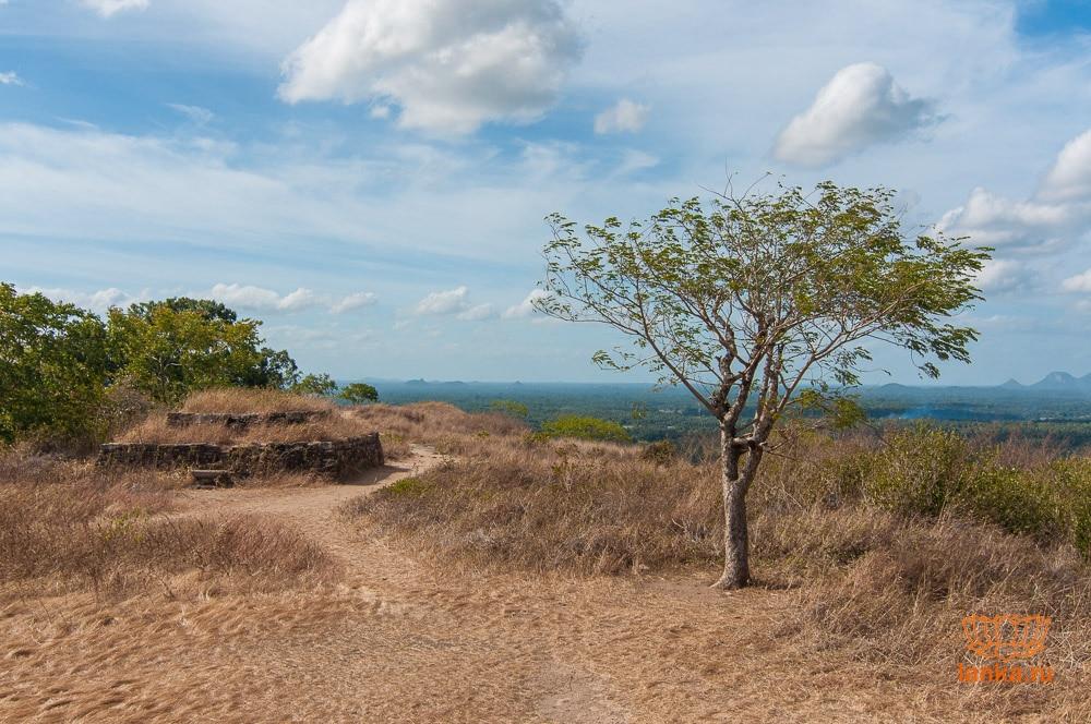 Остатки дагобы на скале Япахува (Yapahuwa)