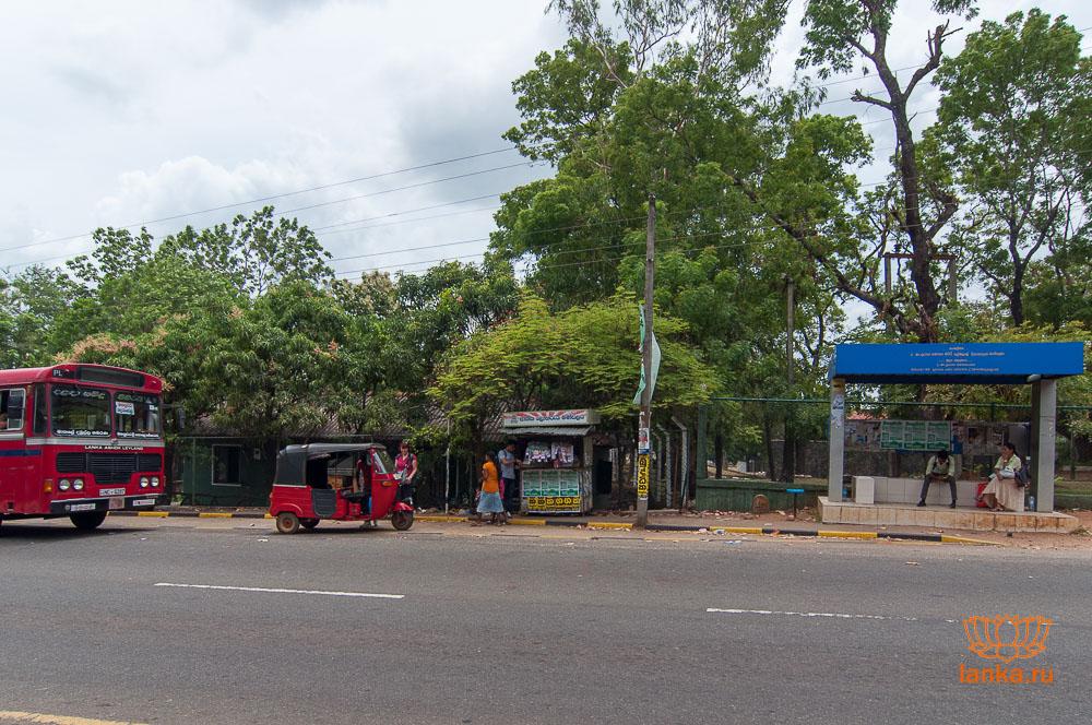 Автобусная остновка в Хабаране в сторону Полоннарувы