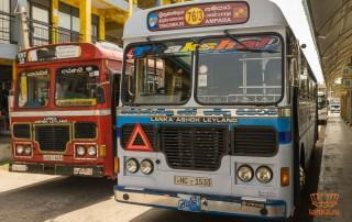Стоимость автобусов Шри-Ланки