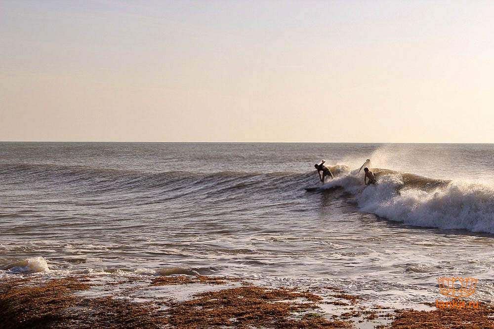 Серфинг в Аругам Бей (Arugam Bay)