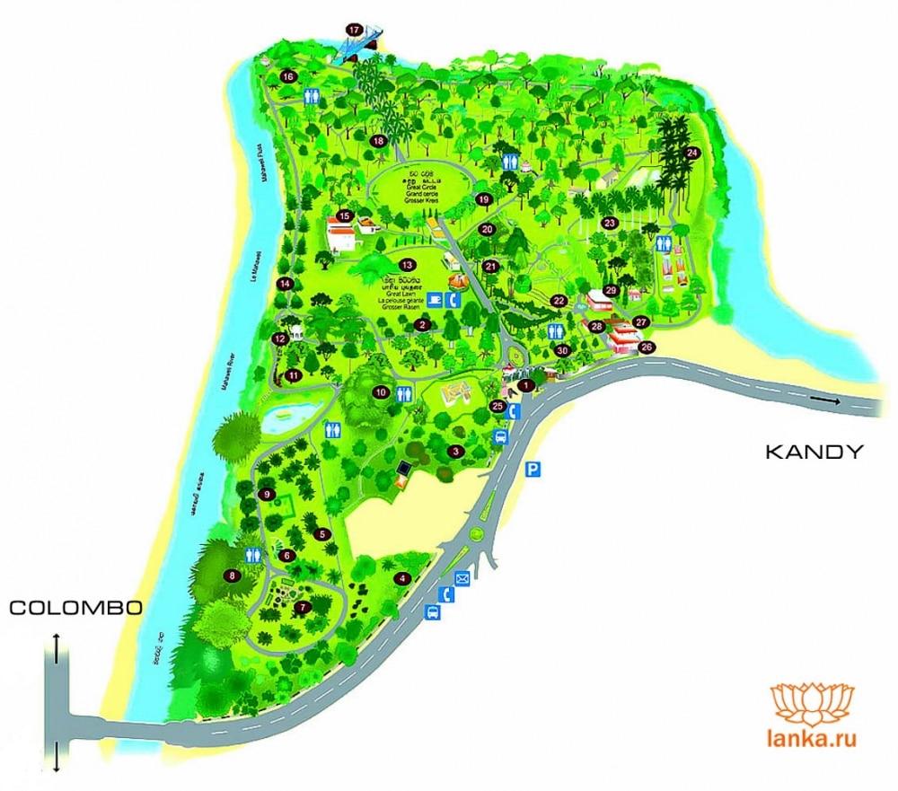 Карта Перадении
