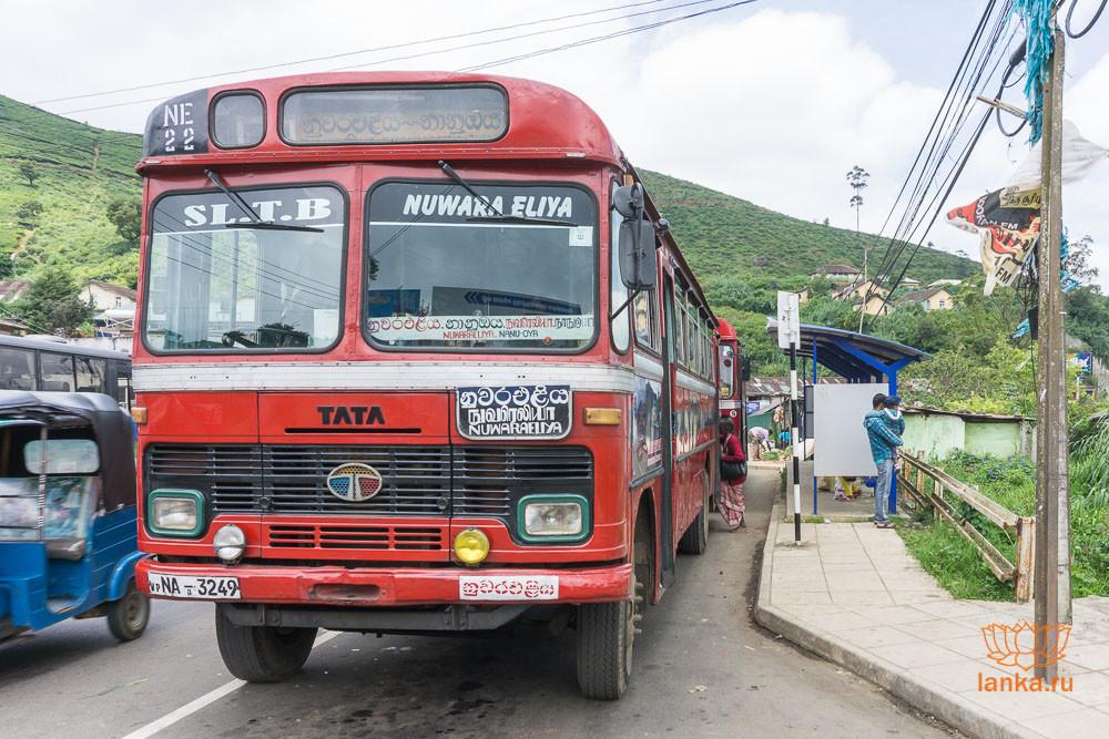 Государственный автобус в Нувара Элию