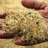 Рисовый песок. Фото Dr. Ashan Geeganage
