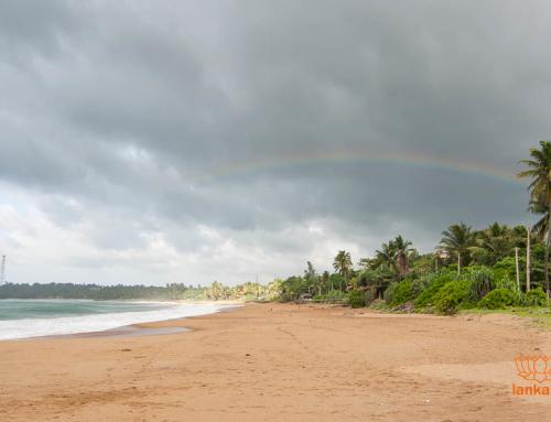 Погода и климат Шри-Ланки