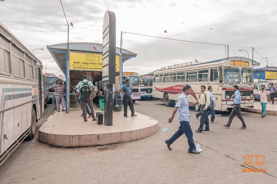Автобусная станция Петтах (Pettah)