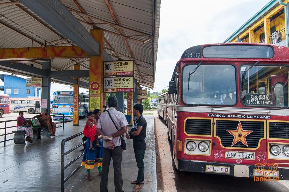 Автобус №900 Trincomalee - Pulmudai