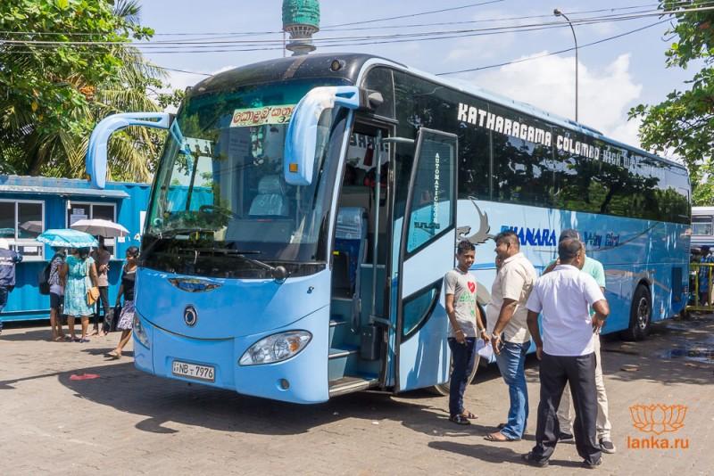 Автобус-экспресс в Катарагаму