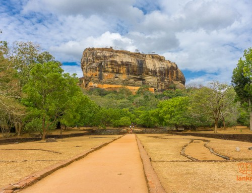 Туры по Шри-Ланке