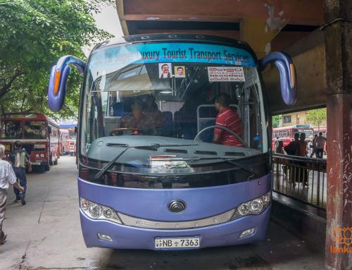 Автобусы-экспрессы и комфортабельные автобусы Шри-Ланки