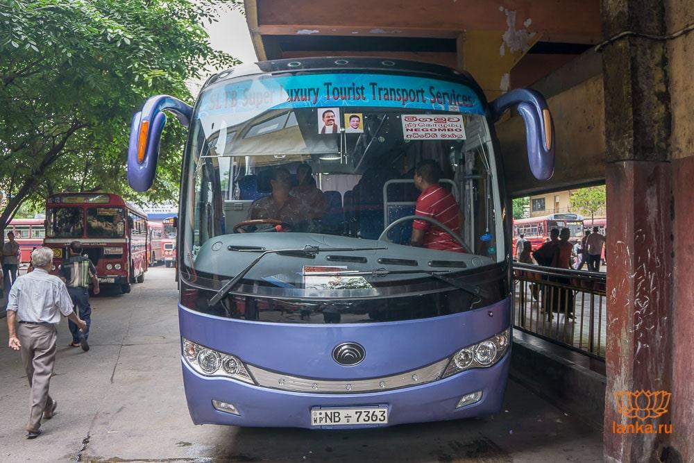 Автобус-экспресс в Негомбо