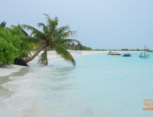 Туры на Мальдивы из Шри-Ланки