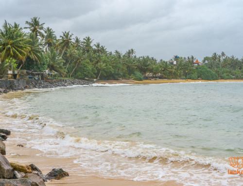 Серф-споты пляжа Мирисса (Mirissa)