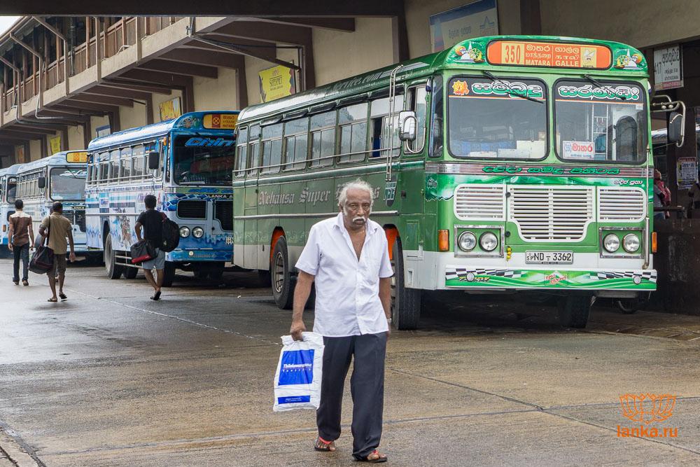 Автобус 350 Matara - Galle