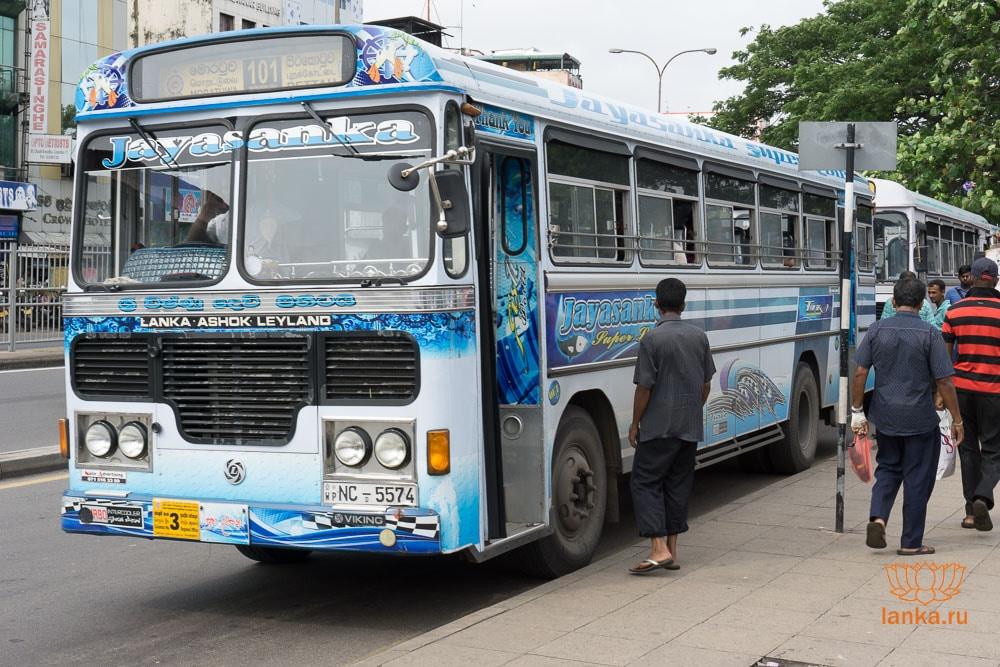 Автобус 101