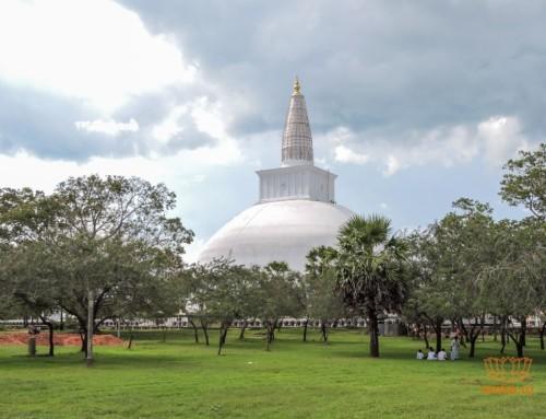 Отзыв о Шри-Ланке и советы будущим туристам