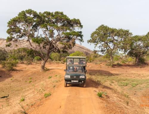 Национальные и природные парки Шри-Ланки