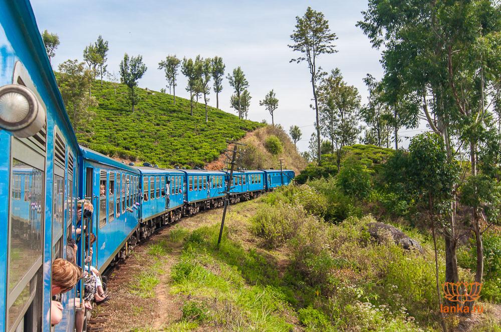 На поезде из Канди в Эллу