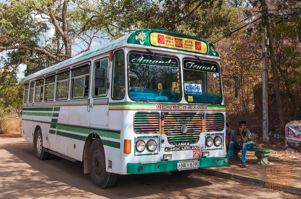 Автобус в Сигирию