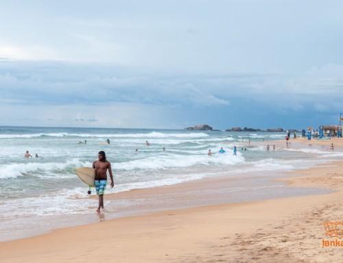 Как вылететь из Шри-Ланки во время пандемии