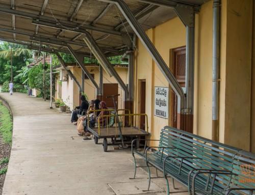 Железнодорожная станция Берувела (Beruwala)