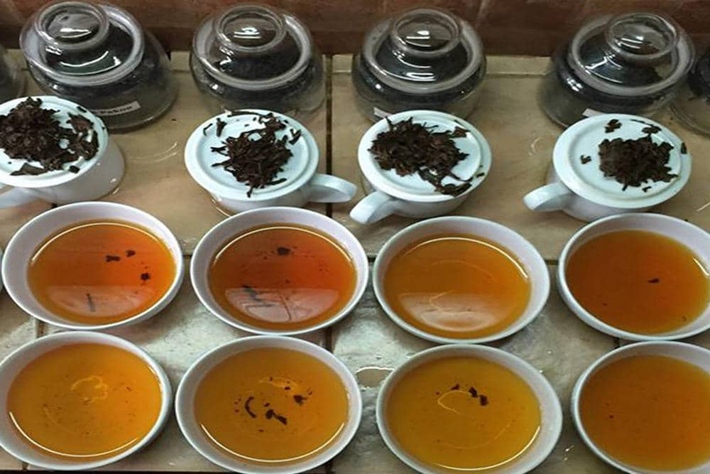 Nandana Tea Factory