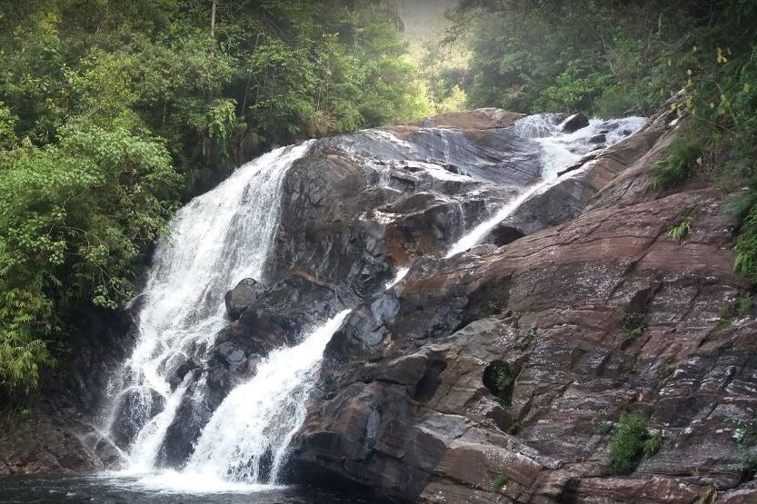 Вход в лес Синхараджа - Lankagama