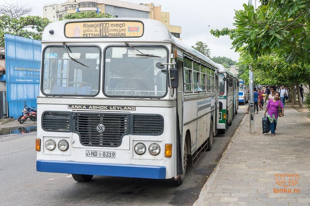 Автобус 100