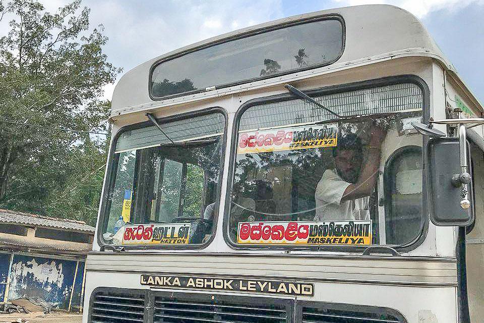 Автобус Хаттон - Делхуси