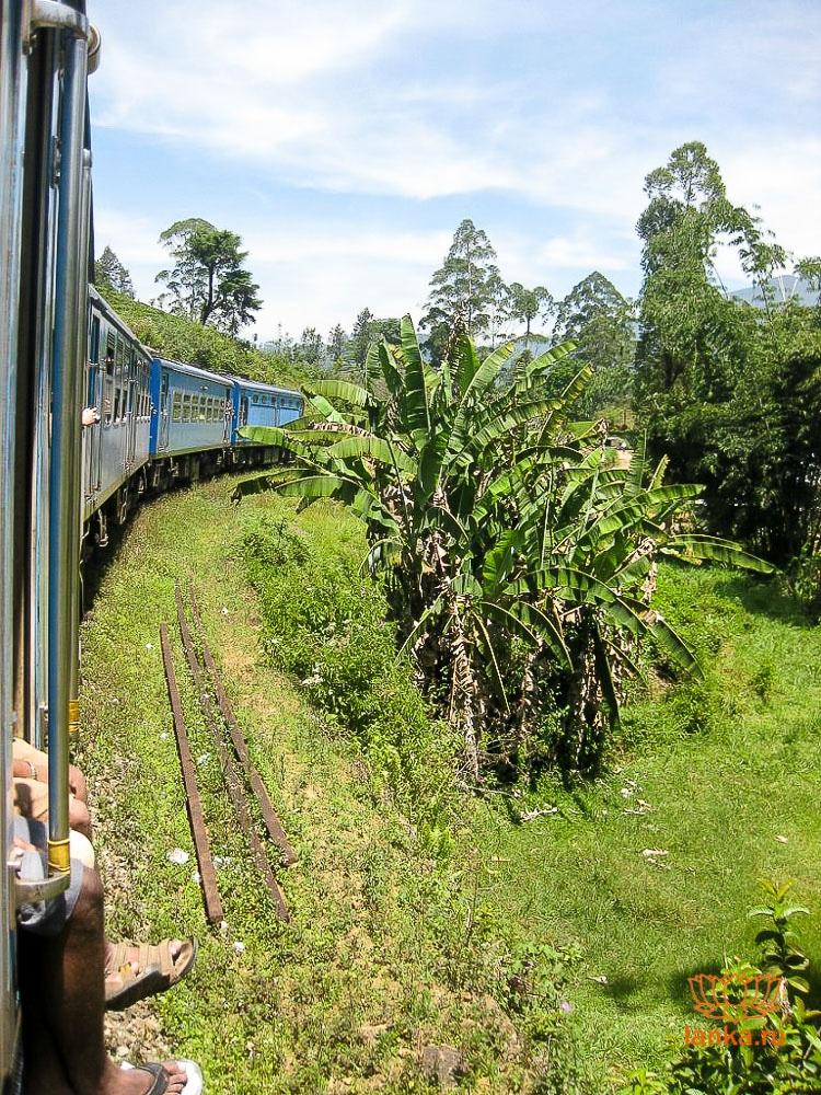 Ланкийский поезд
