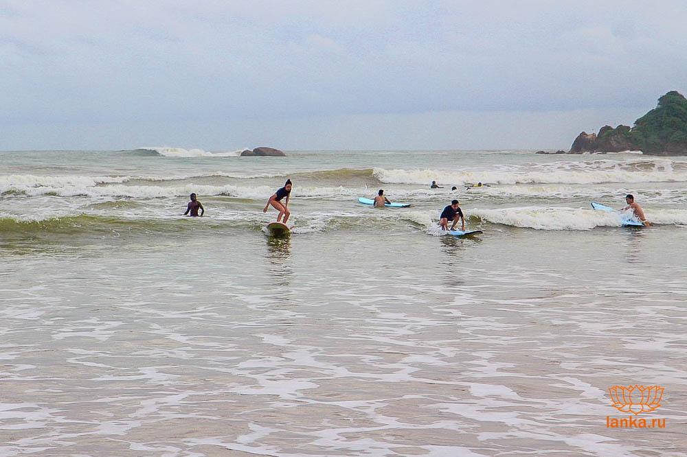 Серфинг в Велигама (Weligama)